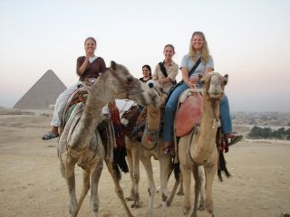 Egypt AUC students on camels